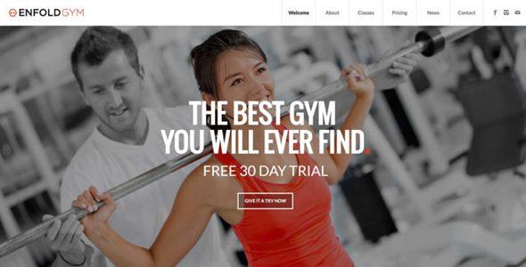 Enfold - 健身WordPress主题
