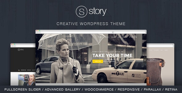 Story 创意多用途WordPress主题