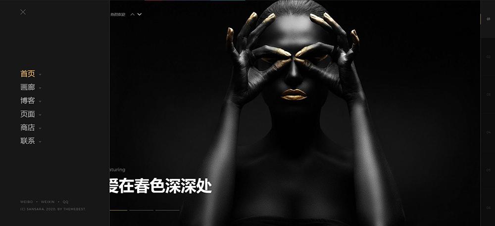Sansara - 摄影艺术WordPress主题