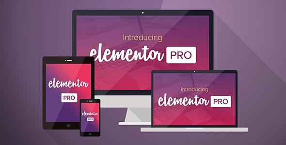Elementor Pro 可视化编辑器WordPress插件汉化版